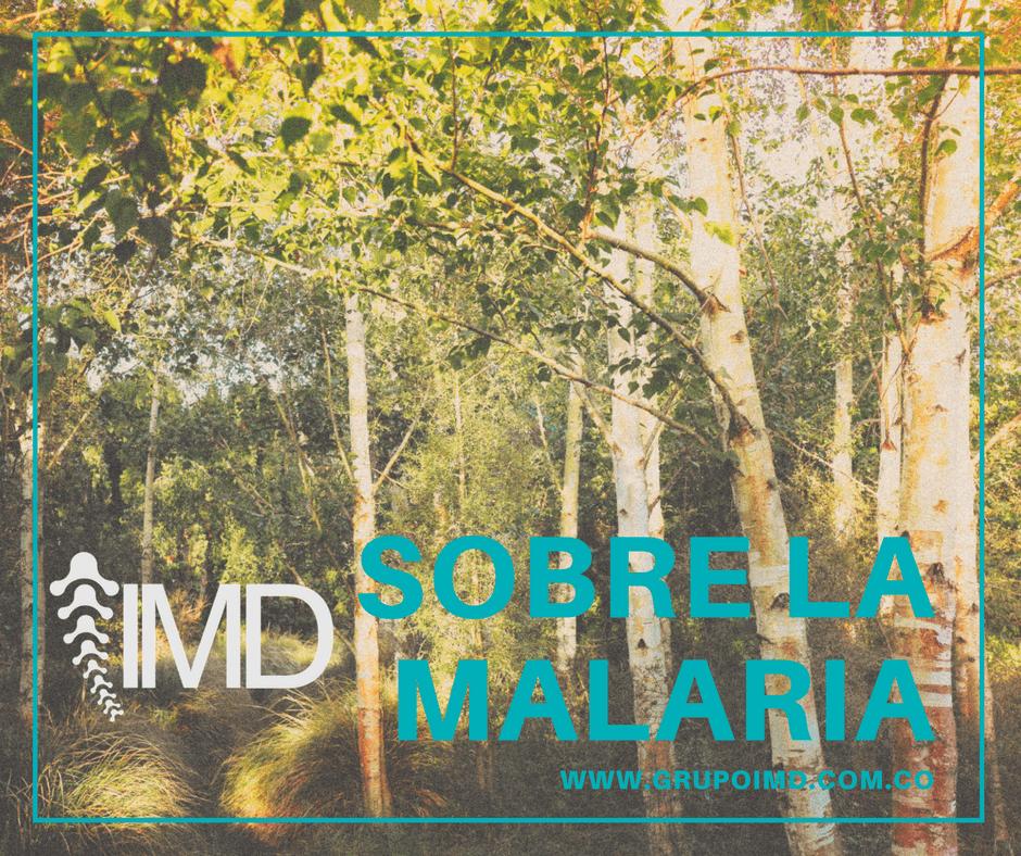 paludismo malaria